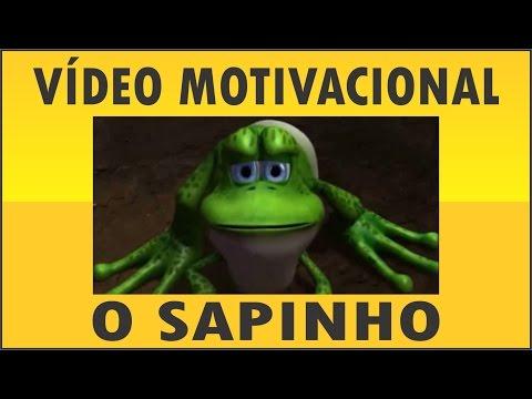 O Sapinho Motivação No Trabalho Em Equipe Youtube