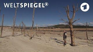 Kapstadt: Wasser wird zum Luxusgut | Weltspiegel