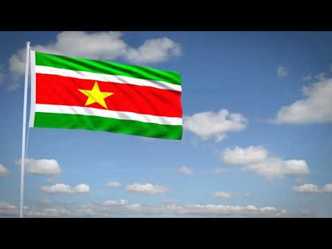 Studio3201 - Animated flag of Surinam
