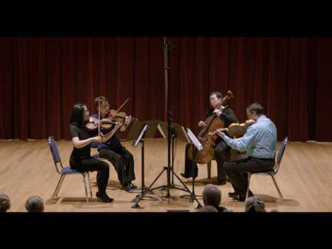 Beethoven String Quartet No. 14 in C sharp minor, Op. 131 - Arnica Quartet