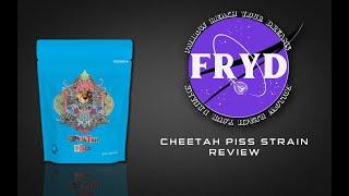 "COOKIES ""CHEETAH PISS""- STRAIN REVIEW | FRYD REVIEWS"
