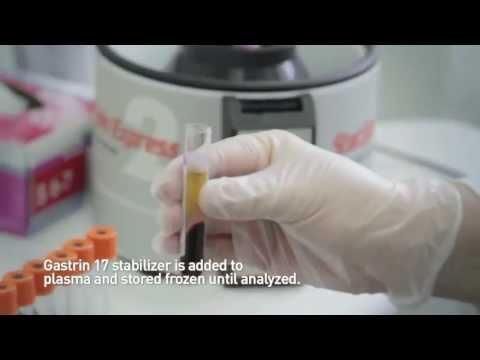Helicobacter pylori — Википедия