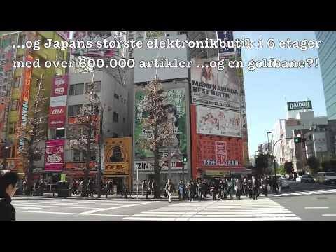 RE Japan Tokyo Electric