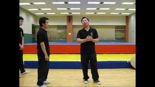 香港 蔡家拳 024 香港武術聯會講座 蔡家講快打 choy gar kung fu hong kong