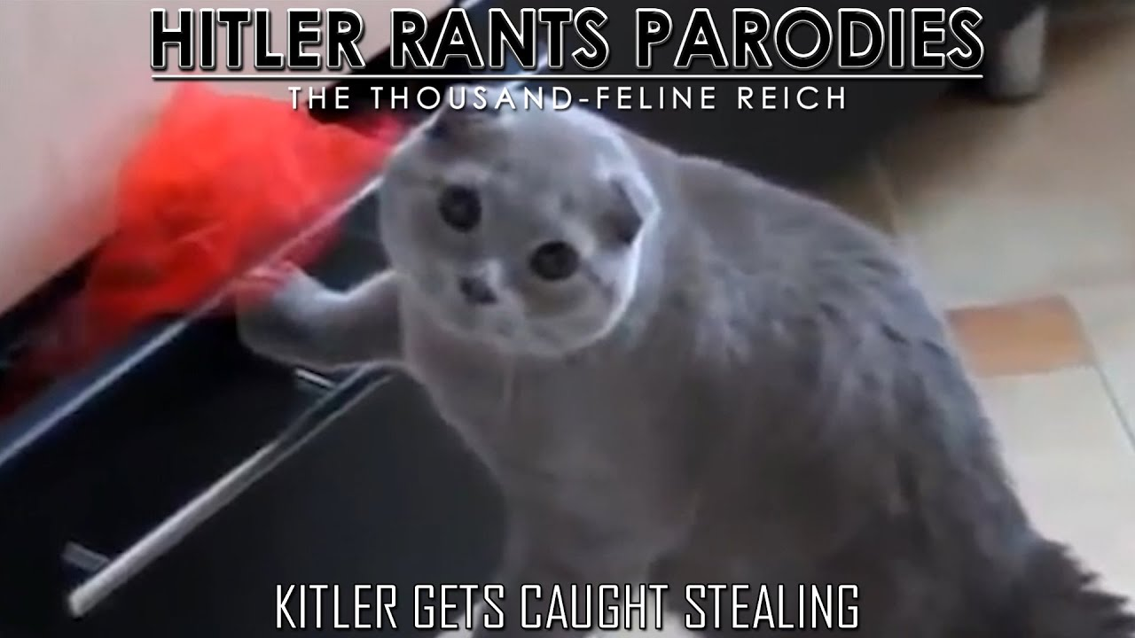 Kitler gets caught stealing