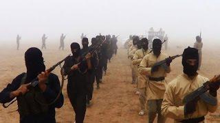 أخبار عربية - #داعش يزرع المخدرات ويبيعها بين العراق وسوريا كمصدر تمويل