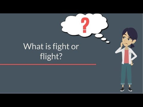 The A to Z of the fight or flight response
