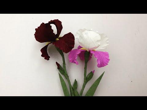 Bella's Craft/ How to make Iris flowers by crepe paper/Hướng dẫn làm hoa diên vĩ bằng giấy nhún