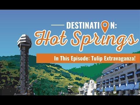 Destination: Hot Springs   Tulip Extravaganza