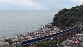 JR東日本 東海道本線 THE ROYAL EXPRESS (伊豆急行2100系) 根府川~早川間通過