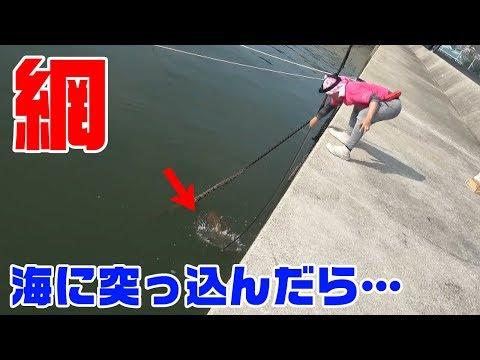 大漁!魚の行き先に思いっきり突っ込んだらまさかの展開に…