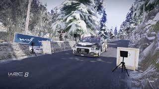 WRC 8 FIA World Rally Championship_20200812202645