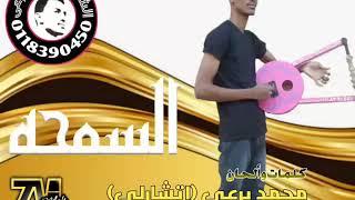 السمحة جديد محمد برعى اتشارلي