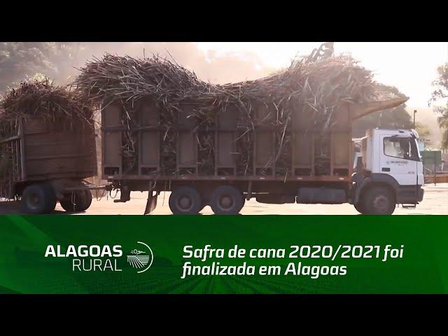 Safra de cana 2020/2021 foi finalizada em Alagoas