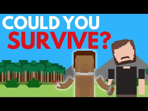 Video image: Could You Survive 2.5 Million Years Ago?