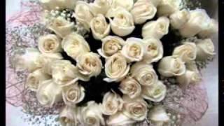 видео К чему снятся белые розы?