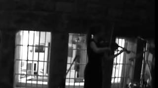 Live Violin on a Summer