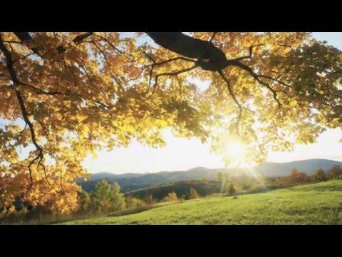 Кліп Sixpence None The Richer - A Million Parachutes
