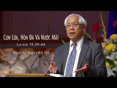 Con Lừa, Hòn Đá Và Nước Mắt | Lu-ca 19.29-44