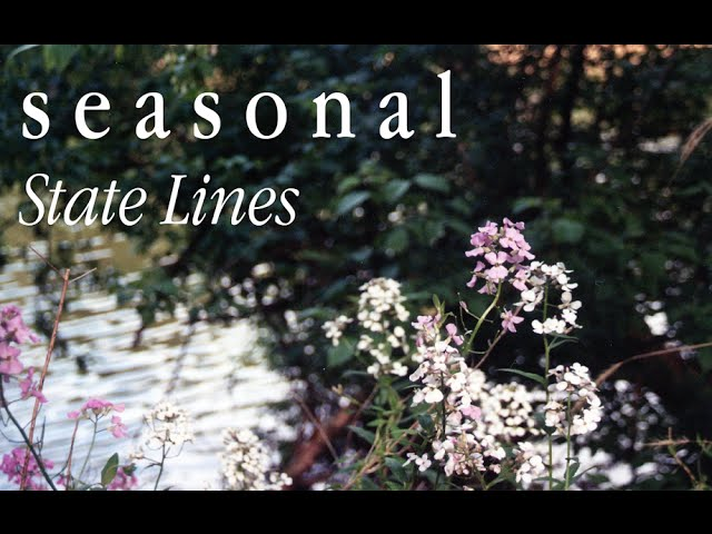 """seasonal - """"State Lines"""" Official Music Video"""