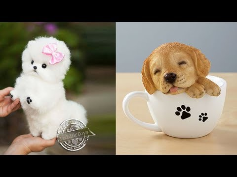 ♥Cutest Puppies Doing Funny Things 2020♥ #1 | Cute Animals