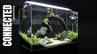 Aquascaping CONNECTED