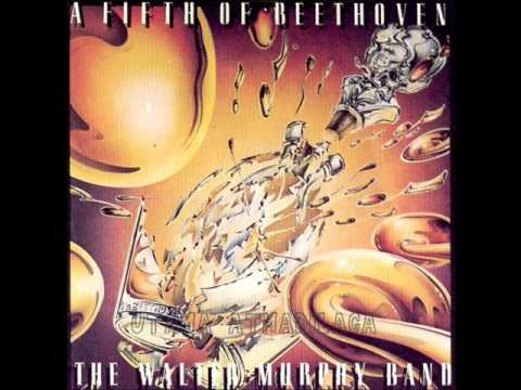 The Walter Murphy Band - A Fifth of Beethoven