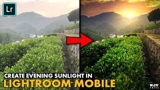 CREATE EVENING SUNLIGHT EFFECT in LIGHTROOM MOBILE | Android | iPhone