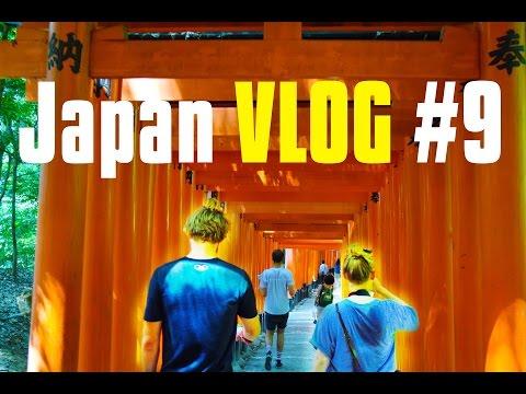 Kyoto & Nara LIGHT FESTIVAL   Japan VLOG #9
