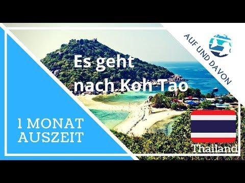 Wir brauchen eine Auszeit vom Reisen - Koh Tao - Thailand -   Vlog # 47