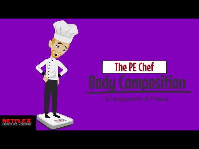 PE Chef: Body Composition (5 Components of Fitness) Explainer