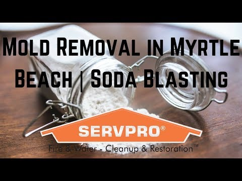 Mold Removal In Myrtle Beach | Soda Blasting