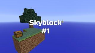 Minecraft: SkyBlock w/JKokki osa 1 - Hups :D