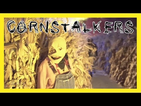 Cornstalkers Low Light (HD) Halloween Haunt 2017 California's Great America