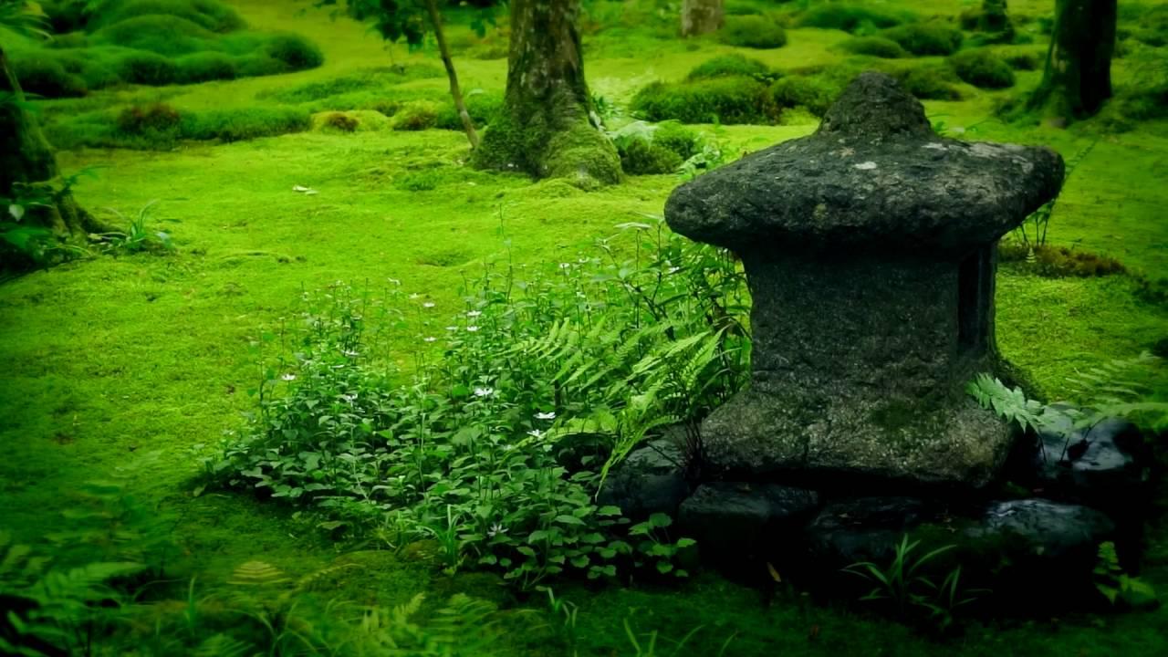 京都・祇王寺1 sony a6000 Kyoto Giouji temple Japanese moss garden ...