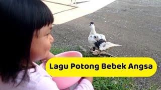 Lagu Potong Bebek Angsa || Lagu Anak Populer