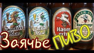 Заячье пиво из Баварии HASEN BRAU Обзор и дегустация от Коктейль ТВ