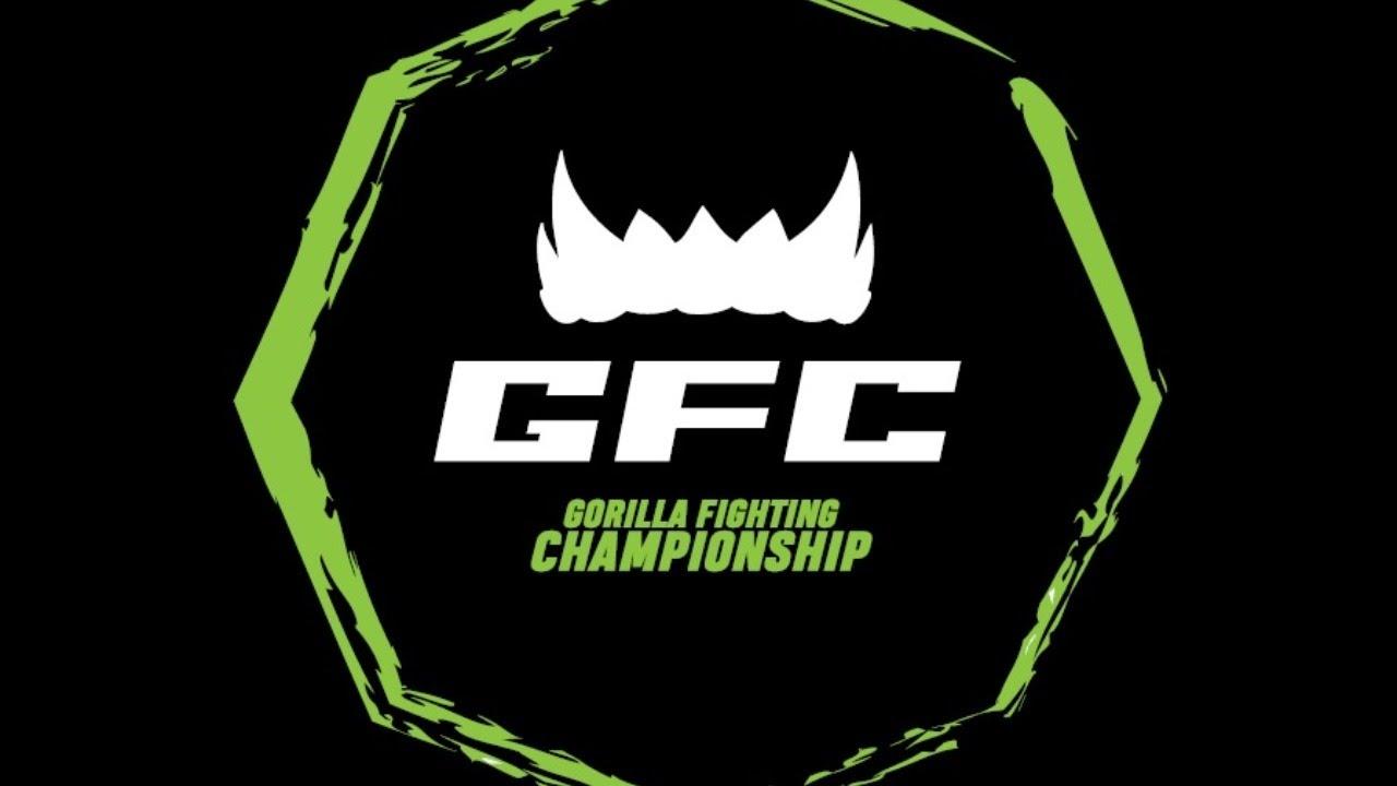 Прямая трансляция турнира GFC 26