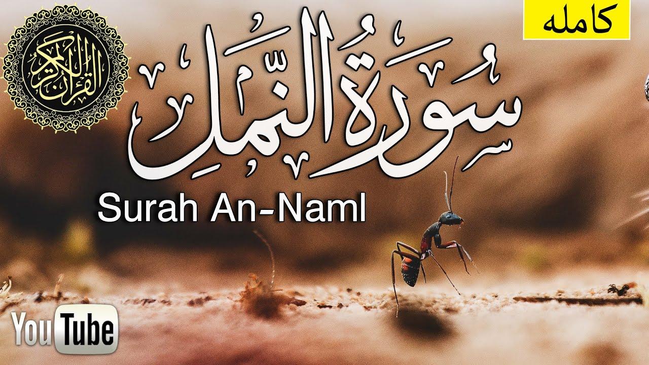 سورة النمل كاملة أجمل تلاوة هادئة تريح القلب ❤ || سبحان من رزقه هذا الصوت محمد زهير  Surah An-Naml