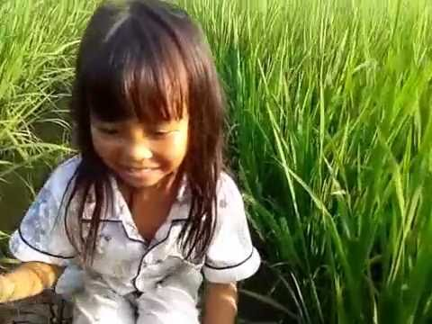 A little girl fishing in the rice fields