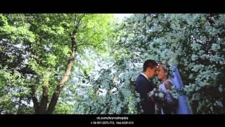 Женя и Оля, свадебный клип, видеосъёмка Харьков, Киев, видеооператор свадьба