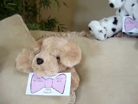 RECORDABLE STUFFED ANIMALS by www.SoundExpressionGreetings.com