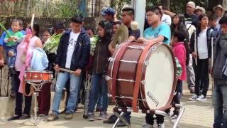 Talea en Villa Alta, marzo 2017. Agradecemos al C. Miguel Bautista González. thumbnail