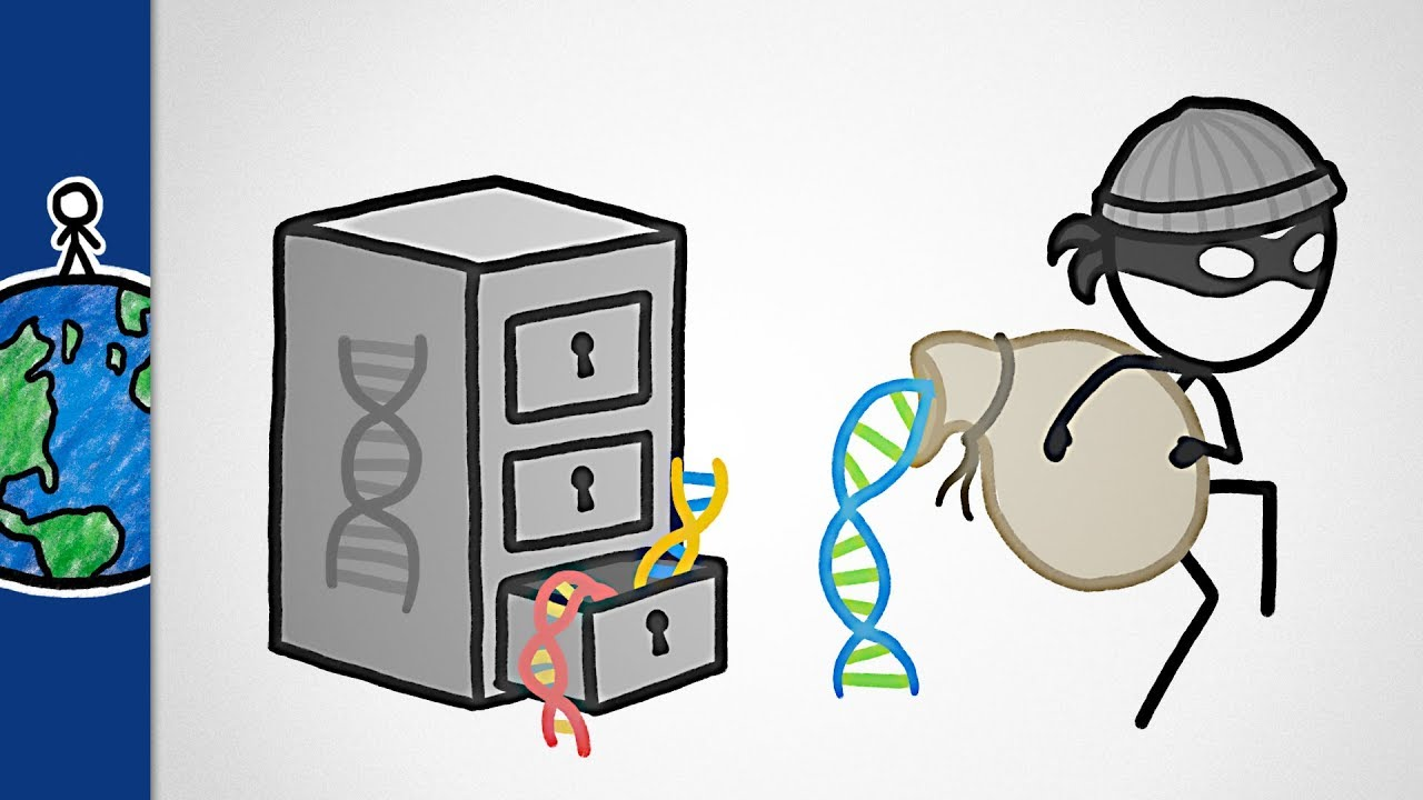 is-it-safe-to-get-your-dna-tested