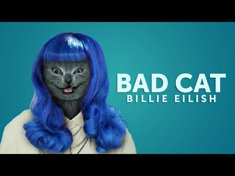 Angry Cats sing Bad Guy by Billie Eilish | Cats Singing Song
