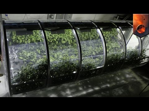 Mars exploration: NASA develops lunar greenhouse to grow vegetables on the Moon and Mars - TomoNews