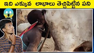 TOP 10 INTERESTING FACTS IN TELUGU   UNKNOWN FACTS IN TELUGU   AMAZING FACTS    PAVAN EDITION
