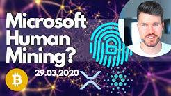 Microsoft Mining Crypto with Human Energy? - IOHK 1million TPS!! - Ripple ODL -South Korea KBDAC