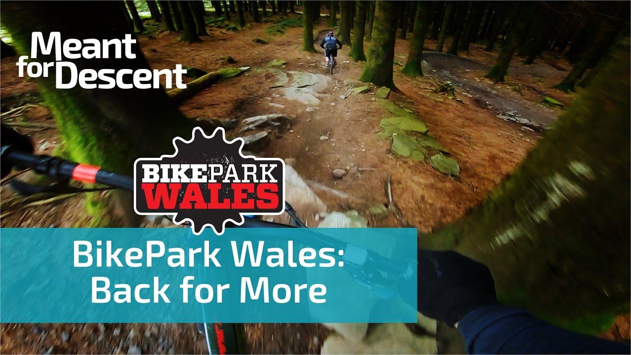 Bike Park Wales | Red, Blue & Green Grade MTB trails
