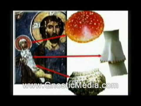 The Pharmacratic Inquisition 4of8